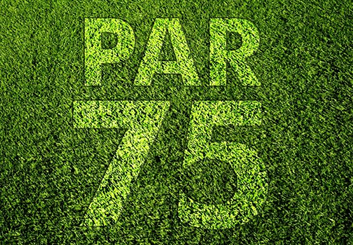 Golf Themed Birthday Party Invitations